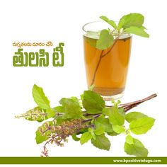 Tulsi #Tea has amazing healing power.that helps you beat #stress. Learn about the potential health benefits of #TulsiTea.