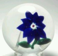 Antique Boston & Sandwich Glass Company (B) Blue Double Poinsettia with Lutz rose. circa 1871 - 1888. This is a antique Boston and Sandwich Double Poinsettia with a two rings of five deep blue petals arranged around a signature Lutz rose. The flower is placed over a clear glass ground. There are two leaves and a stem. Great color with a large Lutz rose in the center. The leaves have great texture.
