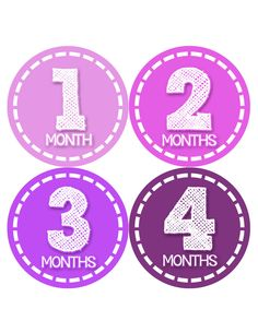 Baby Girl Monthly Baby Stickers Style #436