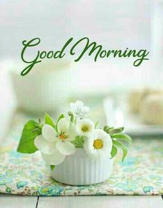 Good Morning Posters, Good Morning Cards, Good Morning Happy, Good Morning Messages, Good Morning Greetings, Good Morning Wishes, Morning Msg, Morning Pics, Morning Pictures