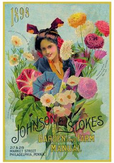 Johnson Stokes Seed 1898 by V. Watson