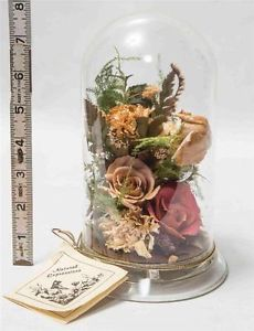 Natural Expressions Bell Jar Cloche Dried Flower Display