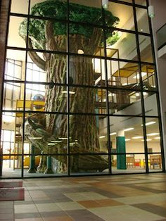 Worlds of Wow - now THAT'S a big indoor tree! Really, it's a large indoor play attraction themed to look like a really big tree! Kids love climbing inside and sliding down the enclosed slides to the play area below!