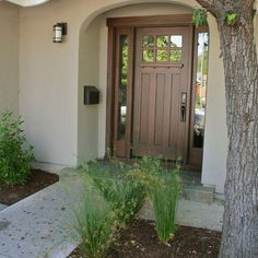 Wood Front Door Design, Pictures, Remodel, Decor and Ideas