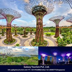 Gardens by the Bay is most popular Attraction in Singapore that gives mesmerizing waterfront views across three riverside gardens..  Read more:- http://goo.gl/pTd0Uw