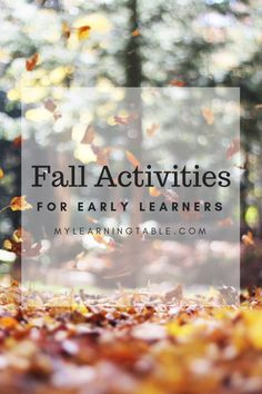 Fun Fall Budget-Friendly Fall Activities - Homeschool Giveaways