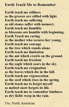 Native American Prayer for Today & Everyday ~ Earth Teach Me To Remember ~ Respect Mother Earth ☆♡☆ Native American Prayers, Native American Spirituality, Native American Wisdom, American Indians, Native American History, Native American Cherokee, Native American Crafts, American Symbols, Native American Tribes