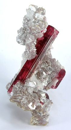 Tourmaline in Lepidolite from Brazil