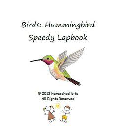 Birds: Hummingbird - Speedy Lapbook - homeschool bits      speedy lapbooks   pay what you wantCurrClick