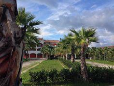 Hotel Prince Franklyn****  veduta dal giardino