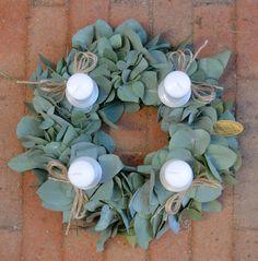 Adventní věnec z eucalyptu Succulents, Plants, Succulent Plants, Plant, Planets