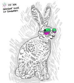 No Carrots, just Sunglasses!