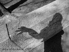 Portfolio Multimedeia 2: Varjoni Nosferatu Kaisaniemi