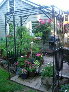 Looking for great ideas for an old gazebo. Love the idea of turning it into an arbor!
