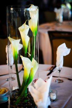 calla lily with riverstones Wedding Reception Centerpieces, Wedding Decorations, Wedding Tables, Calla Lillies Centerpieces, Wedding Colors, Wedding Flowers, Lush Garden, Wedding Designs, Wedding Ideas