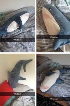 Teen Angst Shark™.