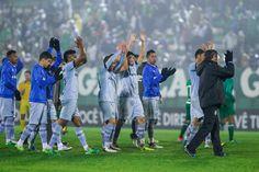 Jogadores do Grêmio vibram com vitória sobre a Chapecoense  (Foto: Lucas Uebel / Grêmio, DVG)