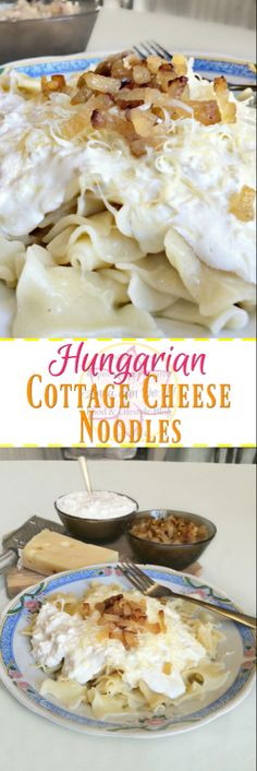 Hungarian Cottage Cheese Noodles - Anna Can Do It! -The Hungarian Cottage Cheese Noodles is a wonderful heartwarming comfort food. It's a noodle dish topped with cottage cheese, sour cream, fried bacon bits and sometimes grated cheese. Slovak Recipes, Czech Recipes, Hungarian Recipes, Ethnic Recipes, German Recipes, Cottage Cheese Pasta, Cottage Cheese Recipes, Paula Deen, Hungarian Cuisine