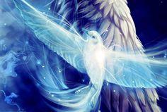 white_dove_fantasy_fly_wings_blue_bird_hd-wallpaper-1466586.jpg (JPEG kép, 1400×944 képpont) - Átméretezett (69%)