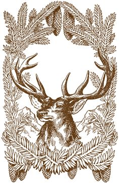 Free Vintage Christmas Pictures – Deer. October 30, 2013 by Karen Watson
