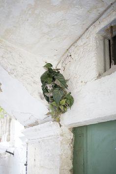 https://flic.kr/p/Jg1pFY | Iss e Tras | Palazzo Zeuli - Bari