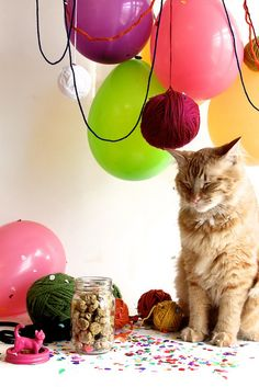 homemade yarn ball catnip toys for when we grow catnip