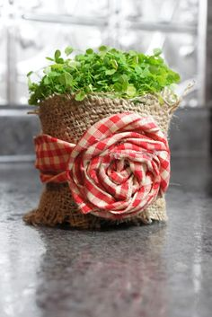 Fabric Roses (sort of a tutorial.) Love the burlap and gingham. Burlap Projects, Burlap Crafts, Diy Projects To Try, Diy And Crafts, Craft Projects, Arts And Crafts, Burlap Decorations, Craft Ideas, Diy Rose