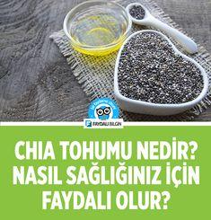 Chia tohumu nedir, nasıl faydalı olur? #chia #chiatohumu #zayıflama #kilo #kiloverme #diyet #beslenme #sağlık #faydalı #bilgi #tarif #yemek #yoğurt #puding