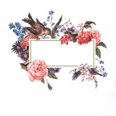 Watercolor Flowers And Border Frame PNG - flower frame, flowers and bird, flowers border, frame, watercolor border Flower Background Wallpaper, Flower Backgrounds, Wallpaper Backgrounds, Iphone Wallpaper, Vogel Clipart, Bird Clipart, Watercolor Border, Watercolor Flowers, Motif Floral