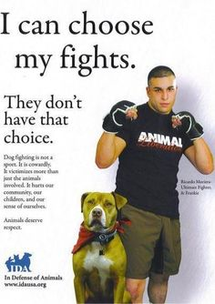 end dog fighting