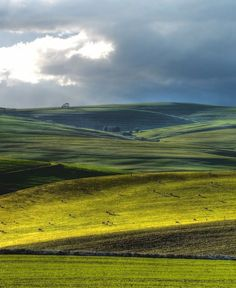 Rolling hills in Caledon South Africa