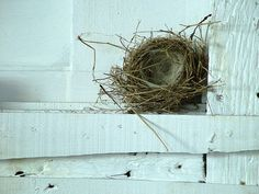 Home by Églantine on Flickr.  ~ beautiful empty nest