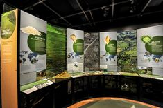American Museum of Natural History Exhibit: Our Global Kitchen by Rachel Kirshenbaum