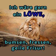 juhuuuu #funny #funnypictures #humor #witzigebilder #lustigesbild #lustigesding #epic #laugh #lachen