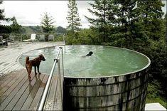Old grain silo pool