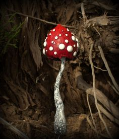 Red white amanita mushroom ,polymer clay toadstool Home decor,Fairy Garden
