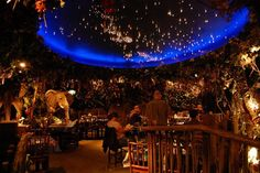 Rainforest Cafe London. Restaurant diners sit underneath the night sky with Elephants and other Rainforest animals.