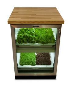 Under counter greenhouse for herbs and micro greens| The Urban Cultivator via The Curated House