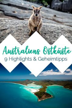 Australien Ostküste Sehenswürdigkeiten, Reise Tipps, Highlights, Route und Geheimtipps für 3 Wochen mit dem Camper #australien #backpacking #australia #roadtrip #camper #route #backpacking #workandtravel #sydney #cairns #outback