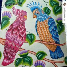 --> If you're in the market for the most popular adult coloring books and supplies including colored pencils, drawing markers, gel pens and watercolors, visit our website at http://ColoringToolkit.com. Color... Relax... Chill.