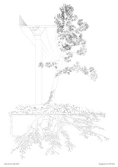 Garden drawn by Athira Mlavil Studio Tom Emerson - Forst Atlas 1 & 2