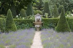 Lavender parterre.