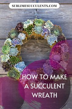 Succulent wreaths are a simple and unique way to display your succulent collection. Learn how to make a succulent wreath here! Succulent Frame, Succulent Cuttings, Succulent Planter Diy, Succulent Wreath, Flowering Succulents, Cacti And Succulents, Planting Succulents, Succulent Species, Indoor Wreath