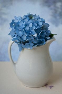 ♪♫♥ simple blue and white ... hard to beat it! and I love hydrangeas!                                                                                                                                                                                 Mais