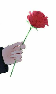 A rose was his calling card. He had always called me his little rose. Art Anime, Manga Anime, Image Manga, Couple Wallpaper, Couple Art, Aesthetic Anime, Cute Wallpapers, Anime Couples, Anime Guys