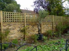New Backyard Wall Garden Fence Ideas Wall Trellis, Trellis Fence, Bamboo Fence, Garden Trellis, Lattice Wall, Trellis Panels, Trellis Ideas, Lattice Fence, Garden Privacy