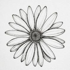25 beautiful flower drawing information & ideas - mykinglist Daisy Flower Drawing, Simple Flower Drawing, Beautiful Flower Drawings, Sunflower Drawing, Flower Sketches, Simple Flowers, Drawing Sketches, Flower Art, Diy Flowers