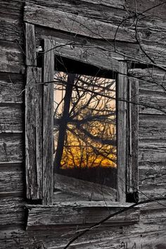 "Enjoy these 32 ""Creepy Abandoned Windows and Doors"". It's no wonder we find these broken windows and doors creepy yet compelling. Old Windows, Windows And Doors, Broken Window, Window View, Through The Window, Old Doors, Old Barns, Doorway, Abandoned Places"