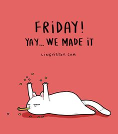 hurray for Friday! - Tap the link now to see all of our cool cat collections!