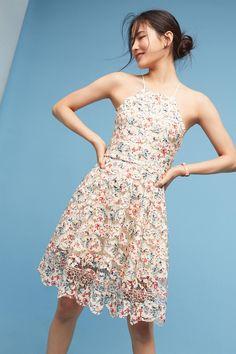 Slide View: 1: Eliza Halter Dress